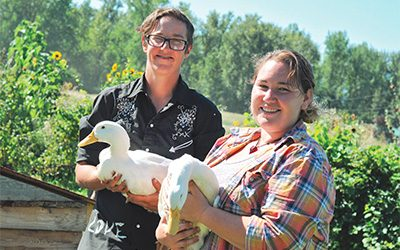 Ducks Roaming Free at Wynndel's Quack Me Up