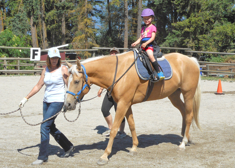 Creston's Therapeutic Riding Program preparing for Art Trot fundraiser